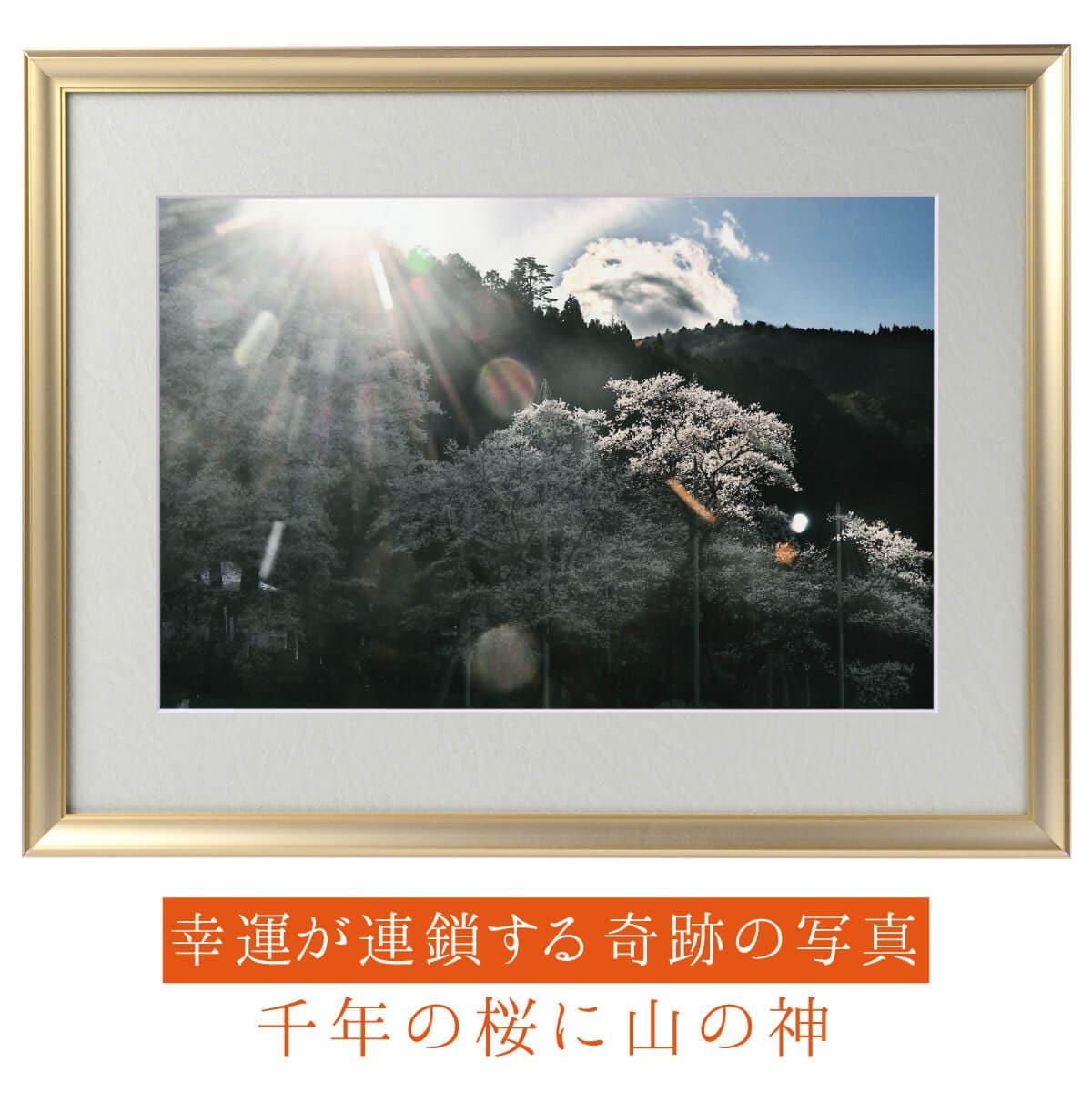 【奇跡の写真】千年の桜に山の神 ≫飾るだけで幸運が連鎖すると話題!秋元隆良の開運フォト作品 開運グッズ