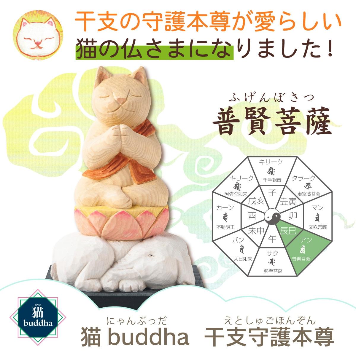 猫buddha 普賢菩薩 開運グッズ