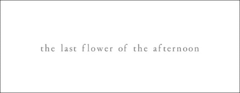 the last flower of the afternoon一覧