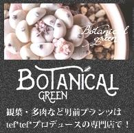 観賞植物・多肉植物専門店BOTANICAL GREEN