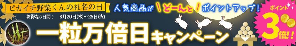 20日〜25日一粒万倍日キャンペーン