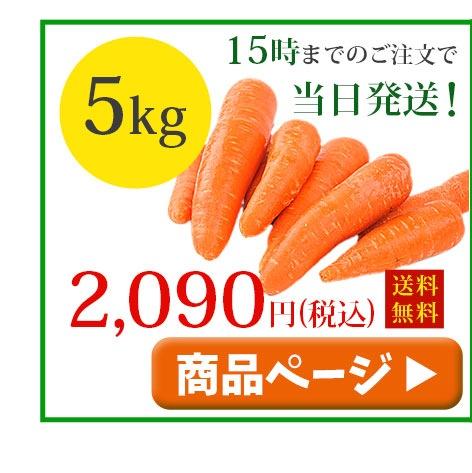 無農薬人参5kg常温