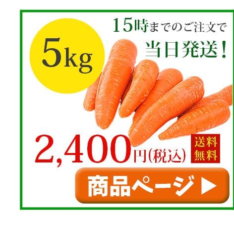 無農薬人参5kg冷蔵