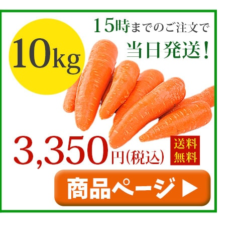 無農薬人参10kg冷蔵