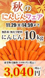 無農薬にんじんフェア 10kg