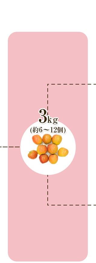 りんご2kg