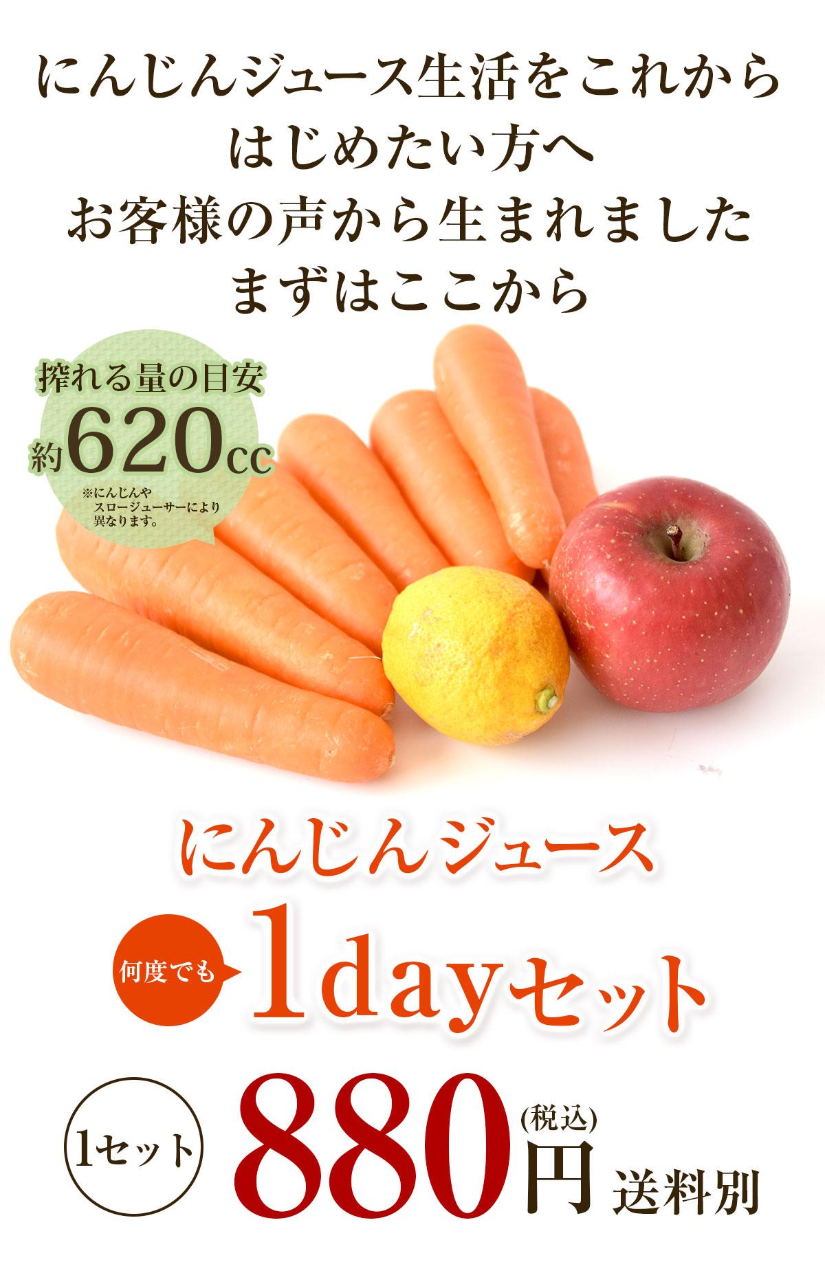にんじんジュース1dayセット
