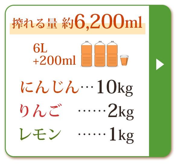 人参10kg+りんご2kg+レモン1kg
