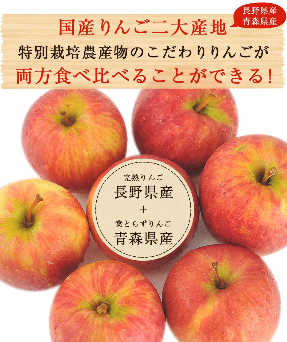 国産りんご2大産地(青森県、長野県)特別栽培農産物のこだわりりんごが両方食べ比べることが出来る!
