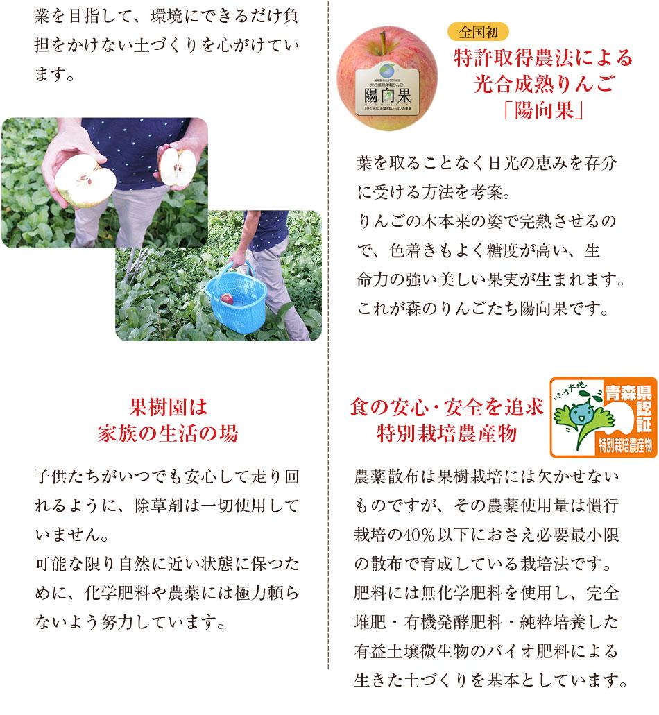 長野県産:子供がいつでも安心して走り回れるように、除草剤は一切使用していません、青森県産:全国初のりんごの農法で特許取得したりんご「陽向果」