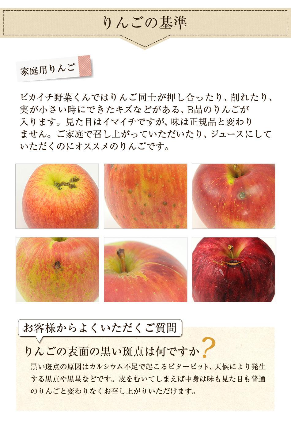 家庭用のりんごでB品となります
