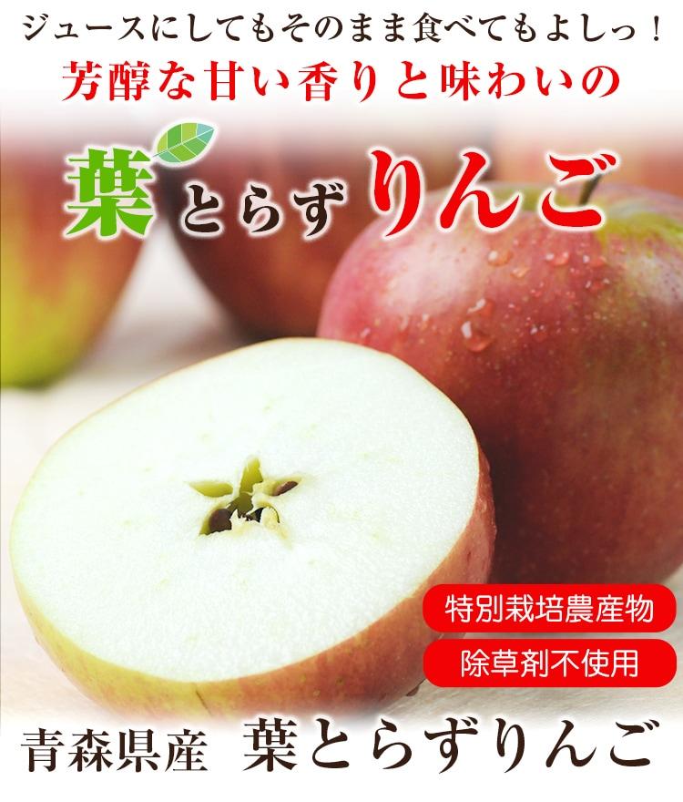 芳醇な甘い香りと味わいの青森県産葉とらずりんご