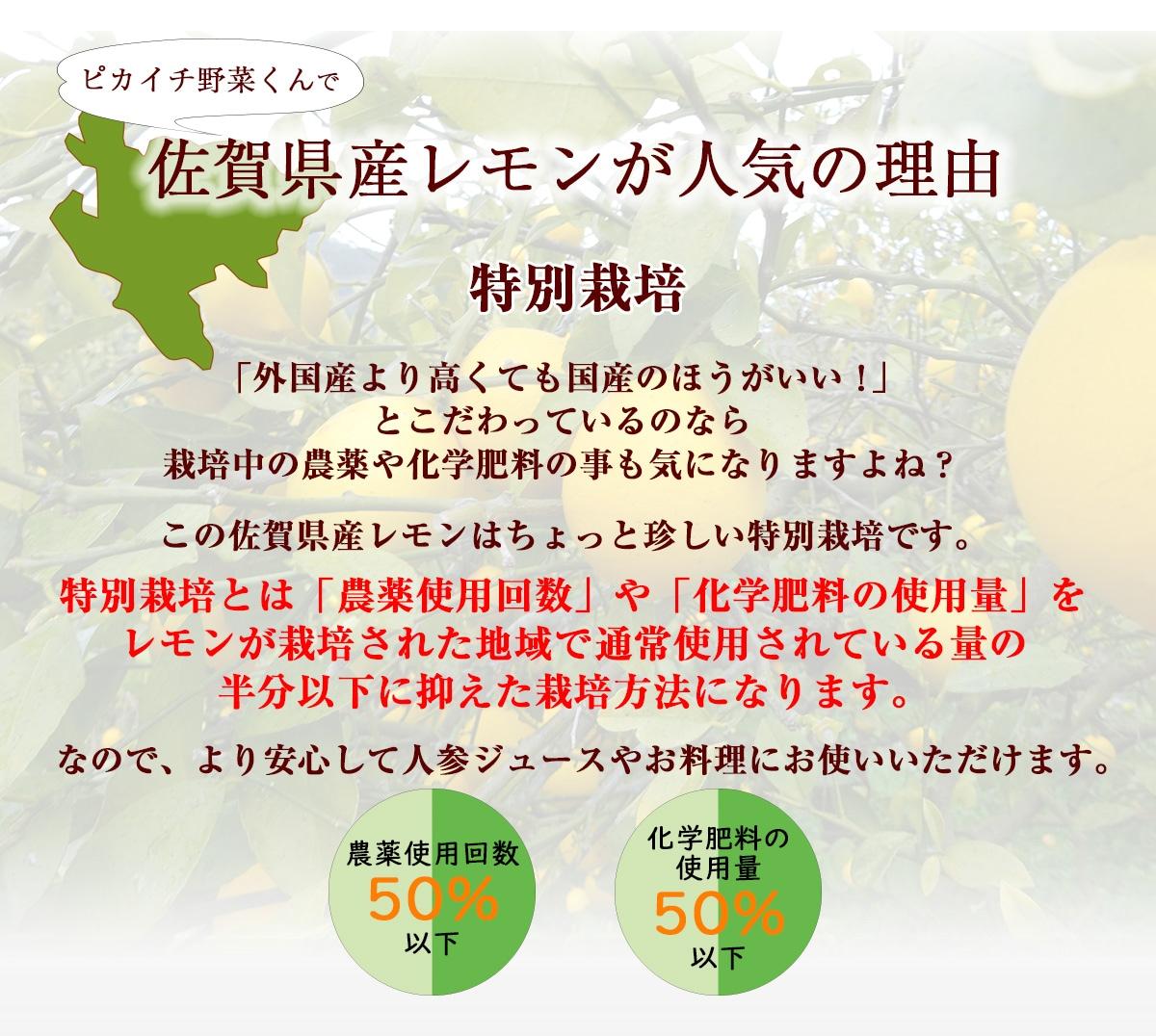 佐賀県産レモンが人気の理由