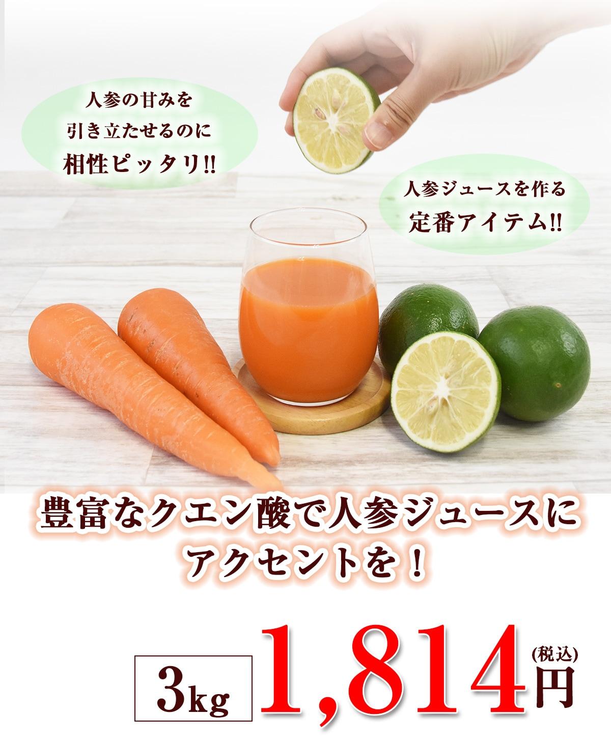 クエン酸で人参ジュースにアクセント 3kg(グリーン)