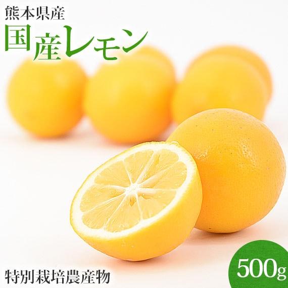 熊本県産レモン
