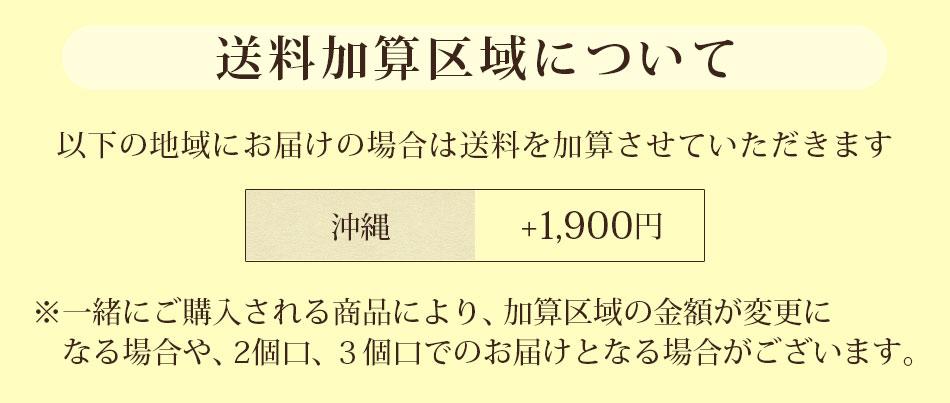 送料加算沖縄のみ(定番)