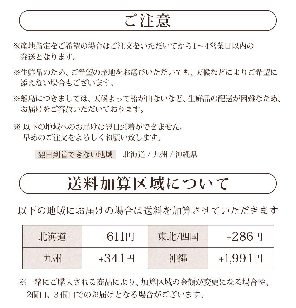 人参単品100サイズ加算(クール)