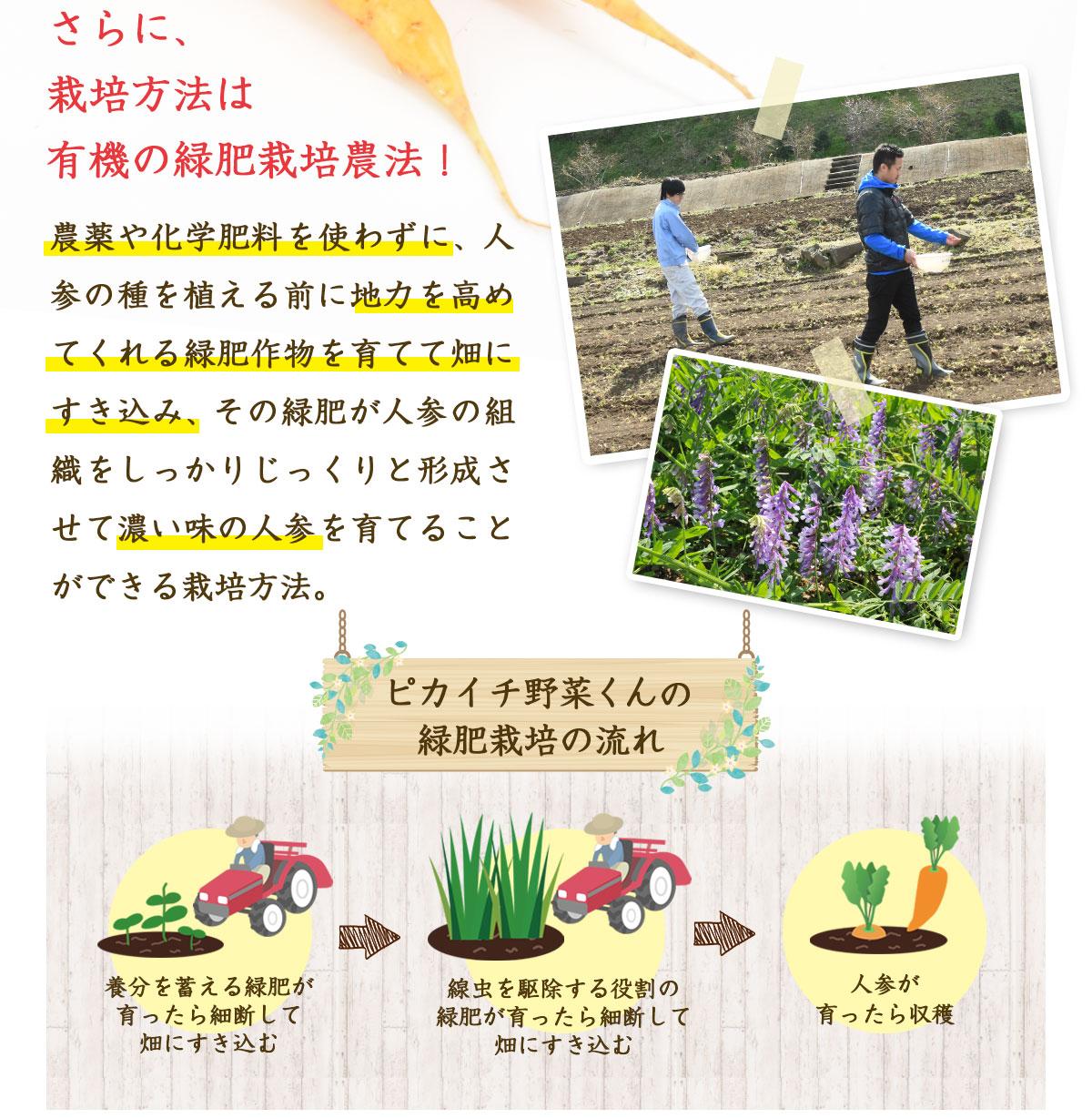 栽培方法は有機の緑肥栽培農法