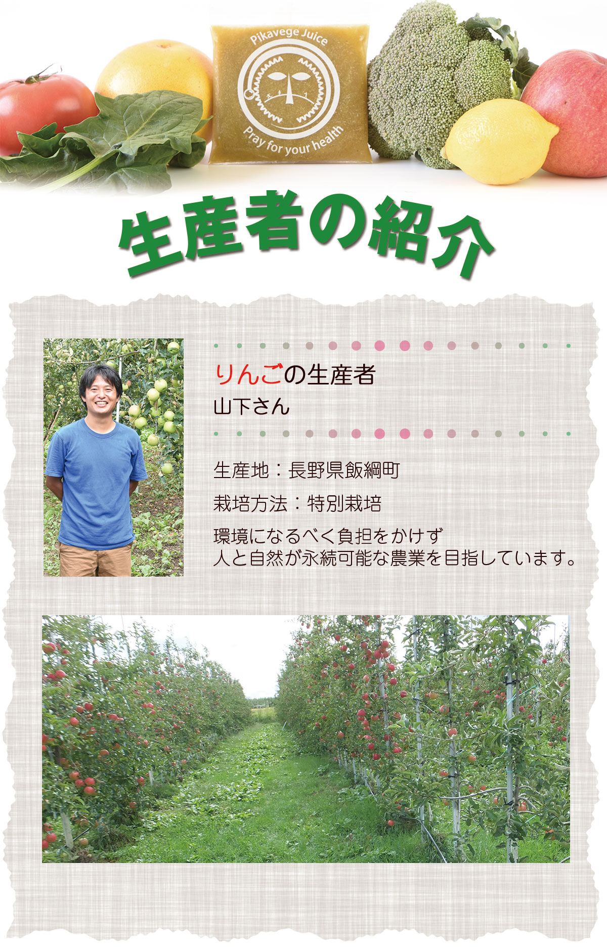 りんごの生産者山下さん