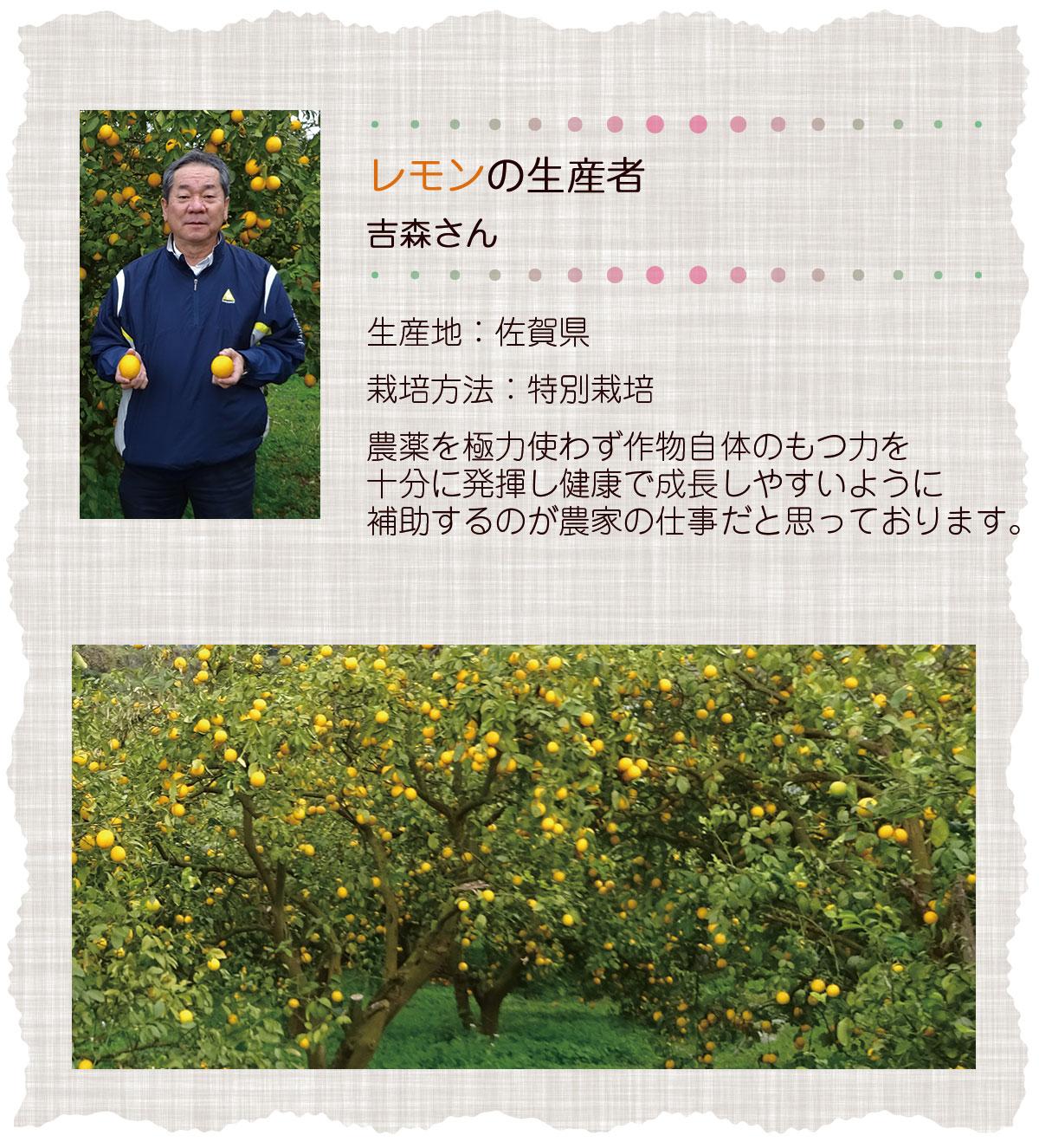 レモンの生産者吉森さん