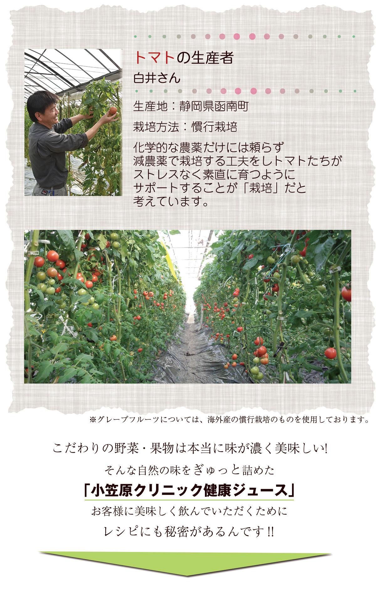 トマトの生産者白井さん