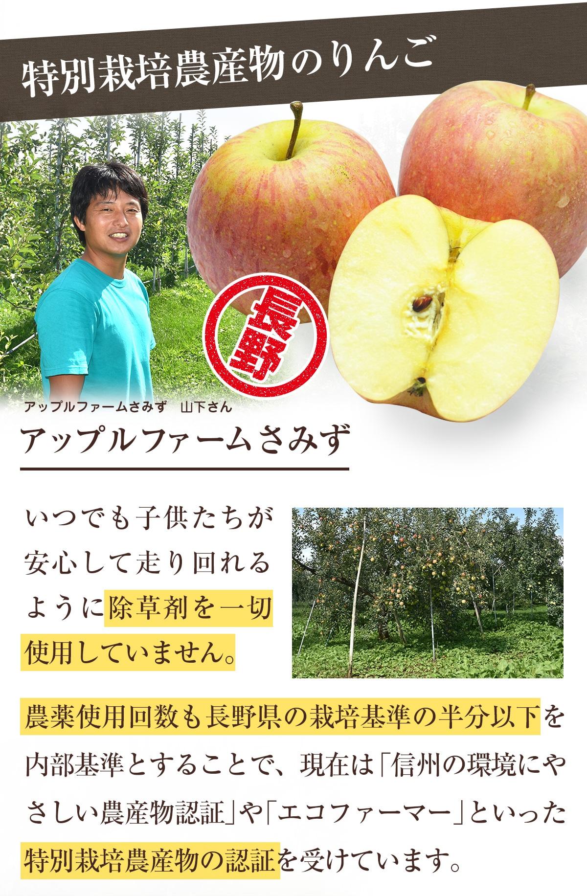 特別栽培農産物のりんご(アップルファームさみず)