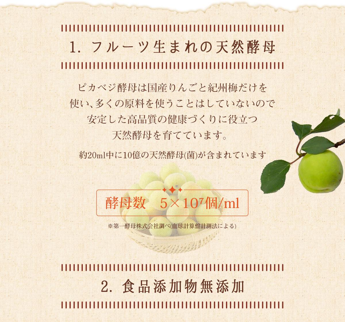 フルーツうまれの天然素材