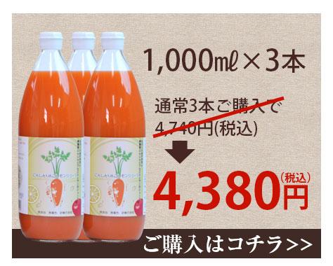 1,000ml×3本 4,380円(税込・送料別)