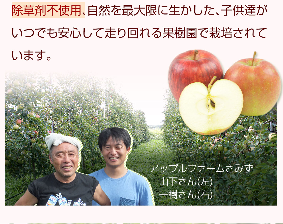除草剤不使用の果樹園