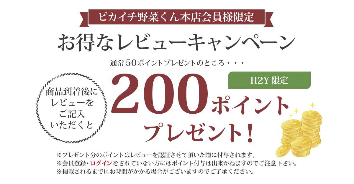 レビュー記載で200ポイントプレゼント!