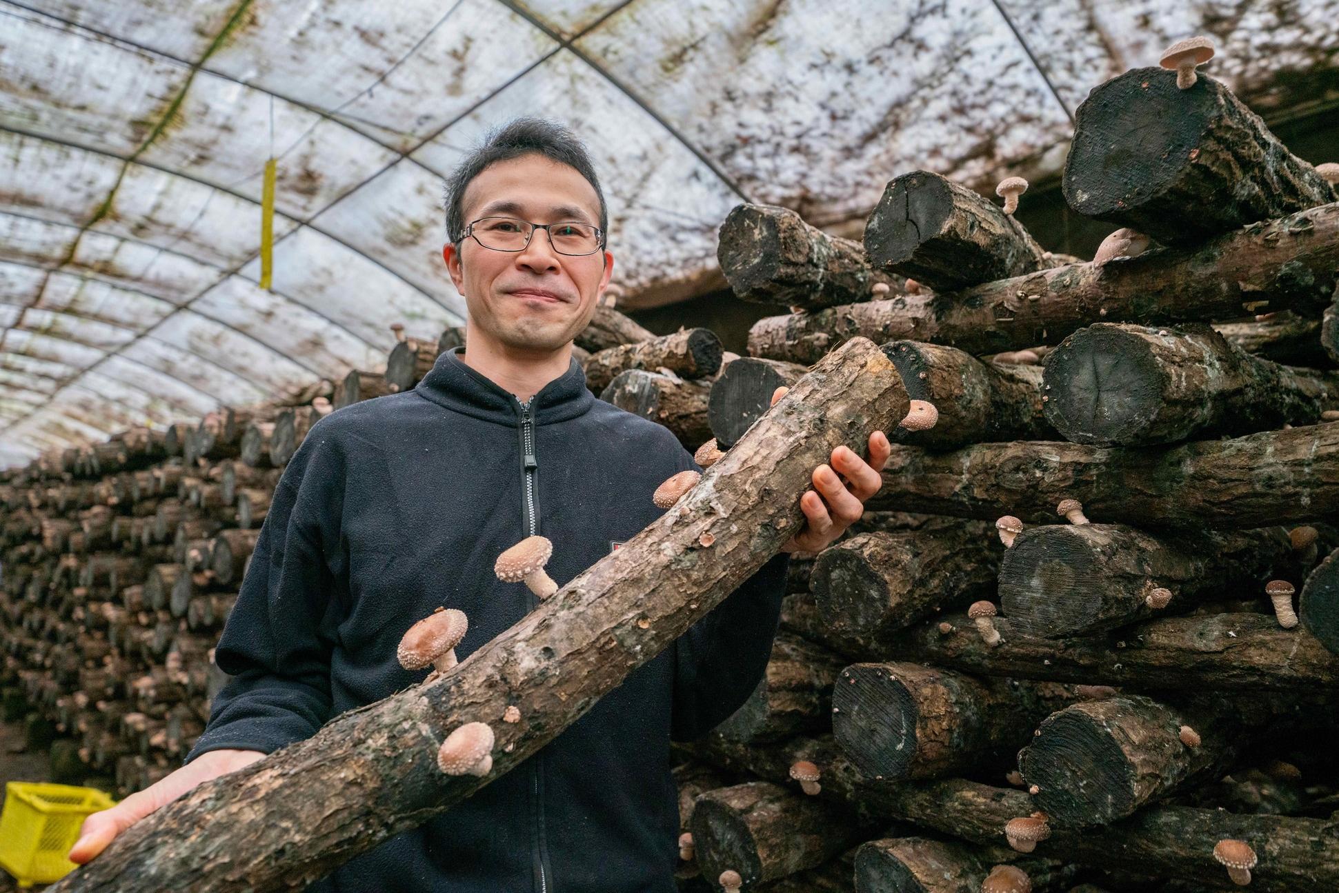 北海道むかわ町穂別にある北上しいたけ園,原木椎茸を持つ農園主の北上さん