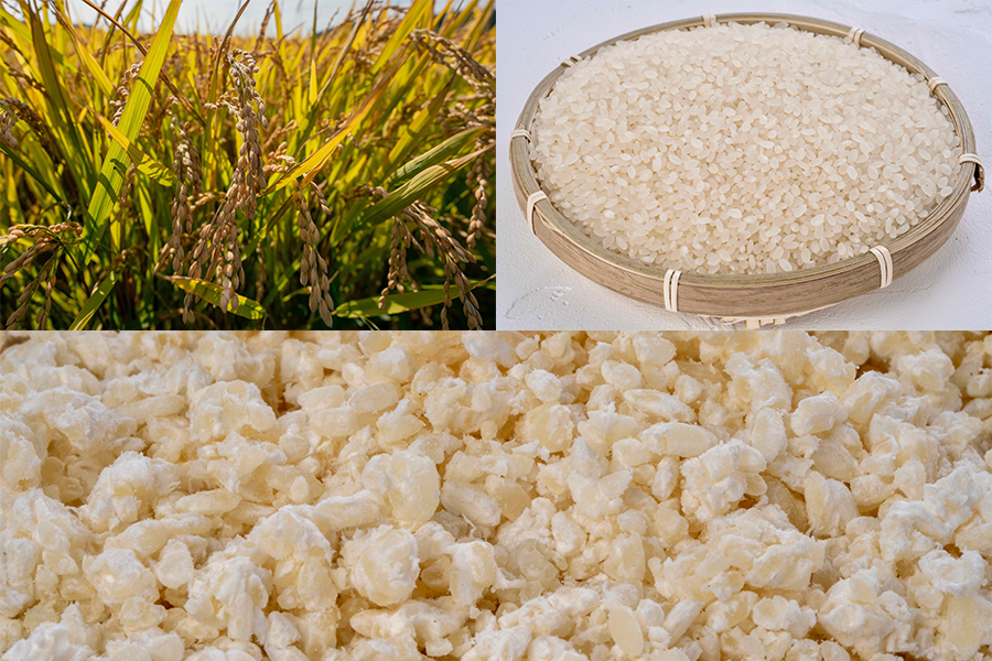 小坂農園のお米ゆきさやかと米糀,自家製味噌の原料