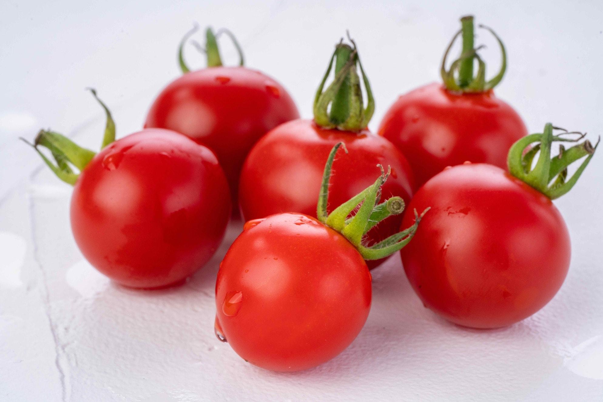 水が滴る真っ赤なミニトマト「ほれまる」