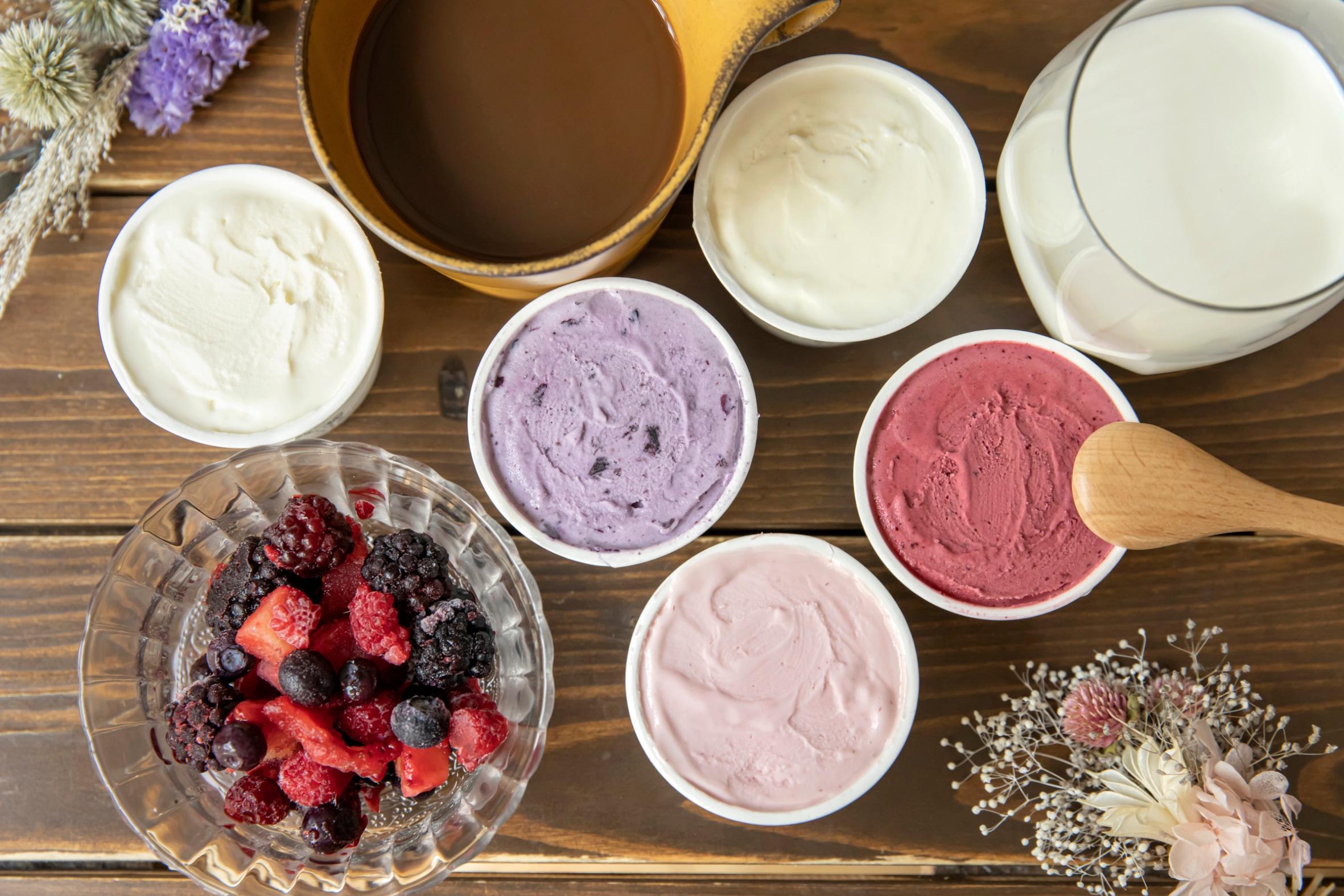 北大アイス5種類,HOKUDAI Clark's Milk アイスクリーム5個セット
