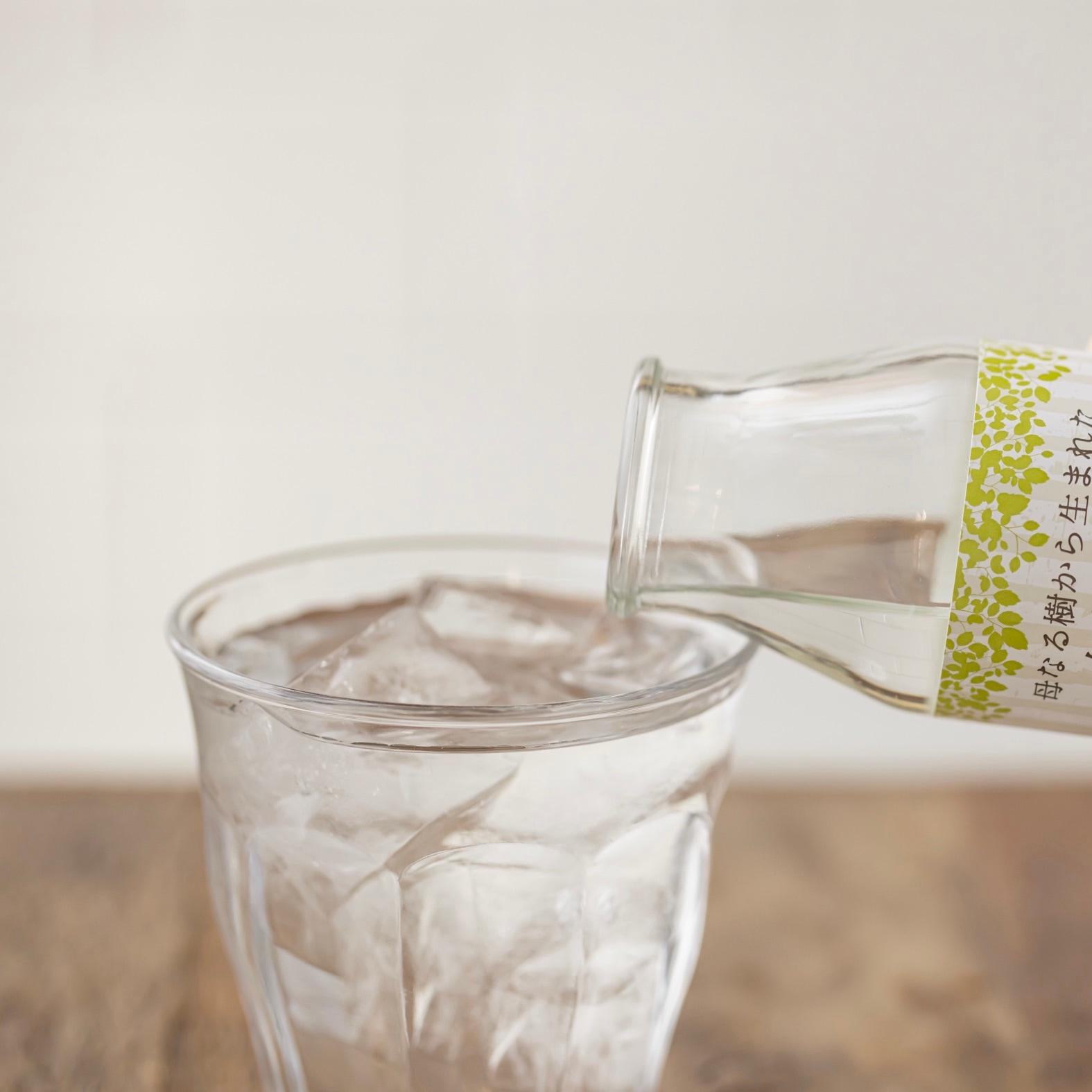 グラスに注がれたThe St Monica(セントモニカ)の母なる樹から生まれた白樺樹液,ソフトドリンク