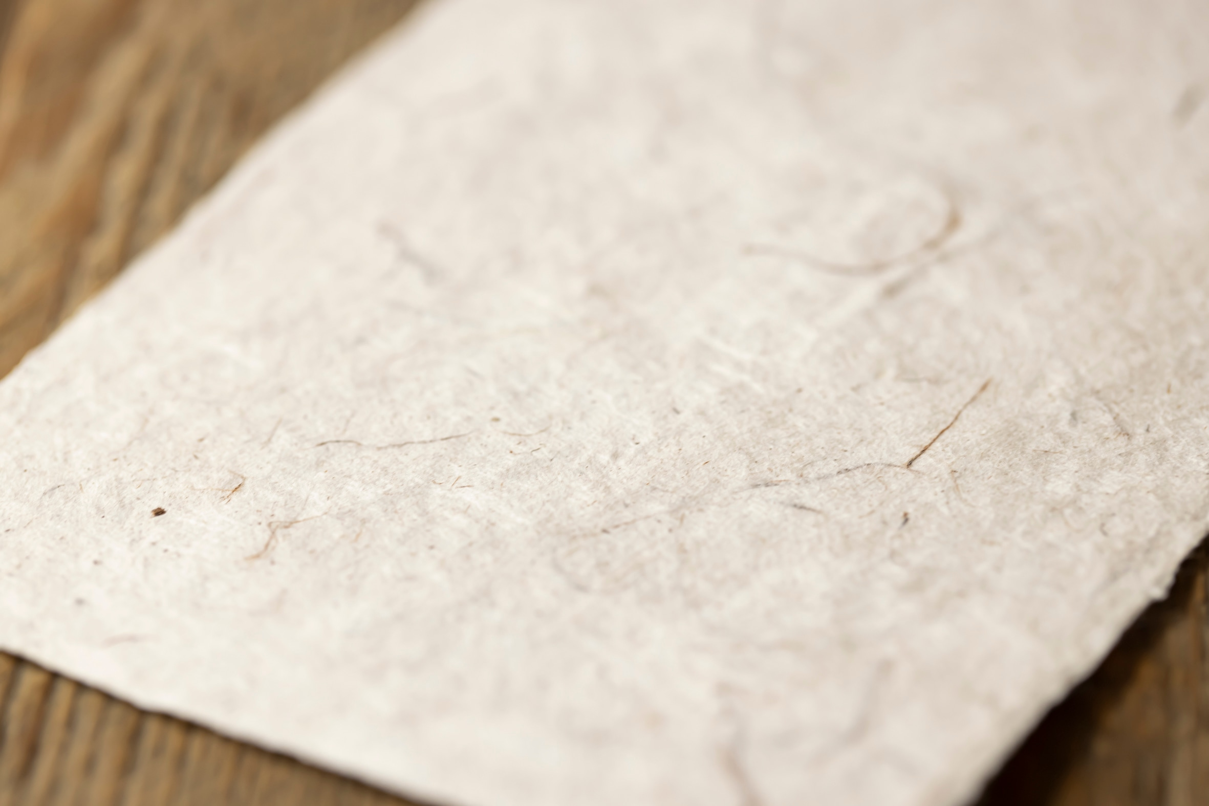 北海道で採取したハルニレ(春楡)から作った手すき和紙,紙びよりの蝦夷和紙
