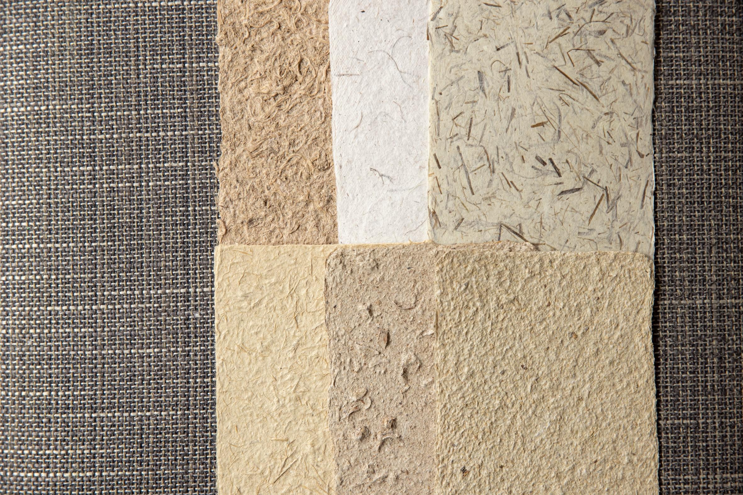 蝦夷和紙工房 紙びよりの「蝦夷和紙」6種類,北海道に自生する植物から作った手すき和紙