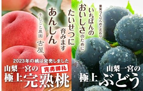 山梨一宮の極上完熟桃、山梨一宮の極上ぶどう。果実づくりへのこだわり いちばんのおいしさのために たいせつに育みます あんしん 手しごと農園古屋