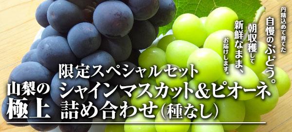 限定スペシャルセット(シャインマスカット&ピオーネ詰め合わせ)