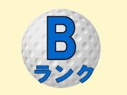 ゴルフボール Bランク ロストボール