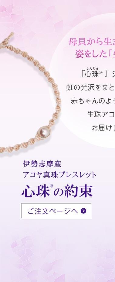 『心珠の約束』ご注文ページへ