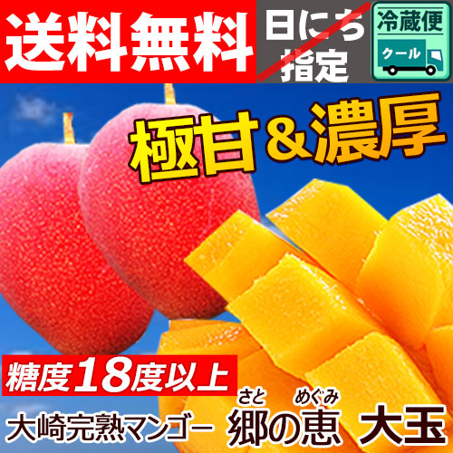 べっぴんマンゴー 優品【大玉】 2個入
