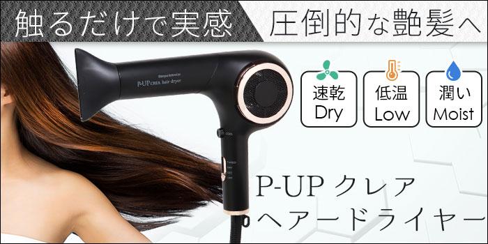 P-UPクレアドライヤー