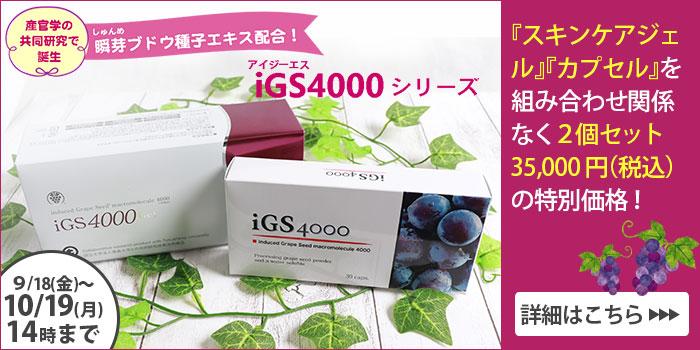 IGS企画