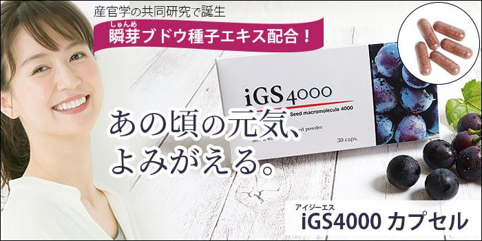 iGS4000カプセル