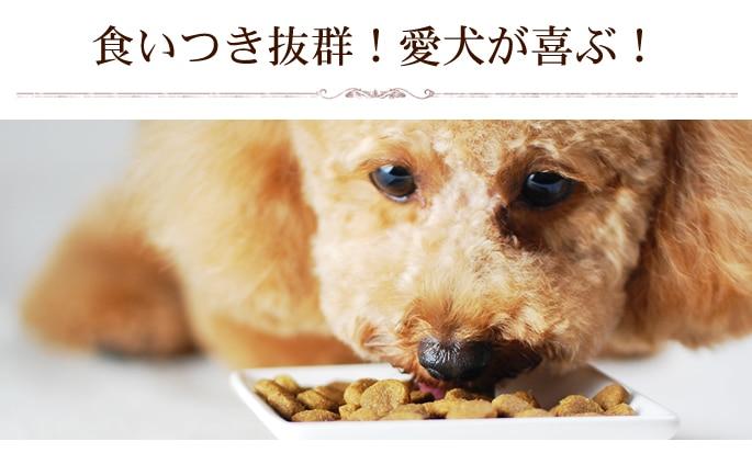 食いつきが良く愛犬が喜ぶ