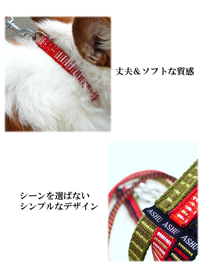 STEPカラー小型犬用Sサイズ