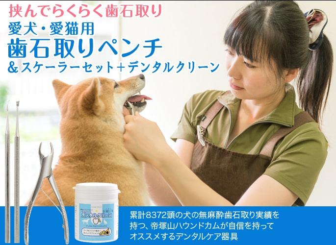 愛犬・愛猫用歯石取りペンチとスケラーセット