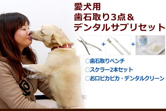 愛犬・愛猫用歯石取りペンチ