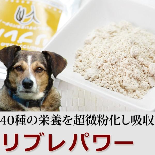 玄米の超微粉末リブレパワー